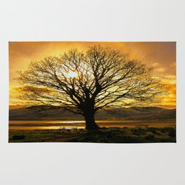 Tree of Fire Rug