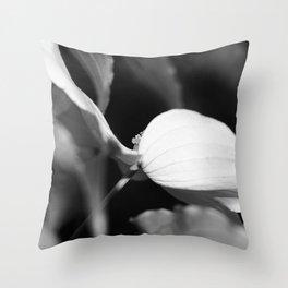 Cornus kousa monochrome Throw Pillow