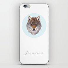 Grey wolf portrait iPhone & iPod Skin
