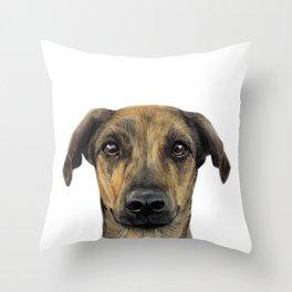 Rescue Dog series, Lab mix, Kloe Throw Pillow
