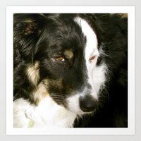 best friend Art Prints featuring Best Friend by Layton Zimmages