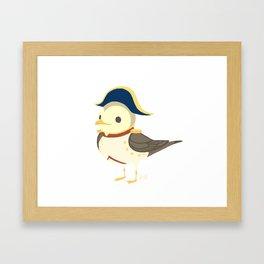 Bonaparte Gull Framed Art Print