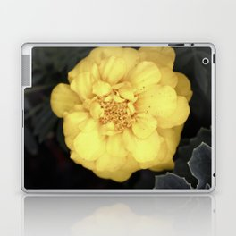 The Soft Yellow Flower (Vintage) Laptop & iPad Skin