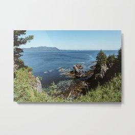 Alaska Cliff Metal Print