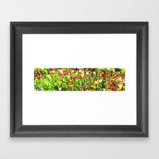 Tulips garden Framed Art Print