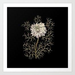 Mysterious Medieval Flower Art Print