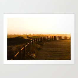 sunset light Art Print