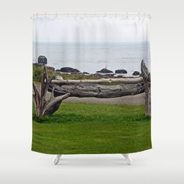 Driftwood Fence and the Sea Shower Curtain