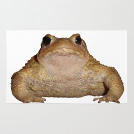 Bufo Bufo European Toad  Isolated Rug
