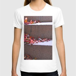 Red Leafs On Stairs T-shirt