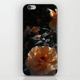 Peaches & Creme iPhone Skin