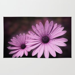 DEW DROPS ON DAISIES Rug