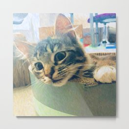Curious Kitty Metal Print