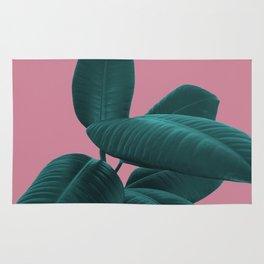 Ficus Elastica #11 #WildRose #decor #art #society6 Rug