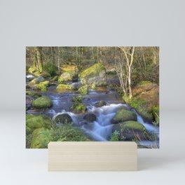 Becky Falls, Dartmoor. Mini Art Print