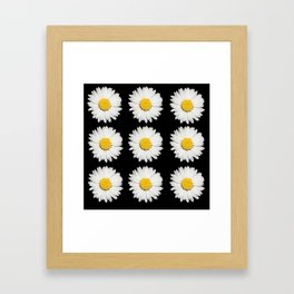 Nine Common Daisies Isolated on A Black Backgound Framed Art Print