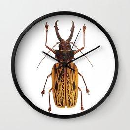 Macrodontia Cervicornis Sabertooth Beetle Wall Clock