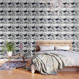 Delphinidae: Dolphin family Wallpaper