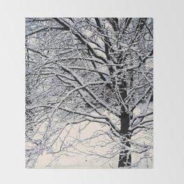 Winter White Throw Blanket