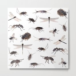 insects colabb. Metal Print