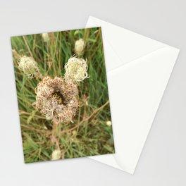 Ungewisse Blume Stationery Cards