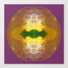 Solar Boom Canvas Print