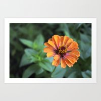 rileigh smirl Art Prints featuring Orange and Pink by Rileigh Smirl
