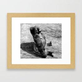 Sun Bathing Framed Art Print