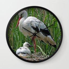 Stork_2015_0101 Wall Clock