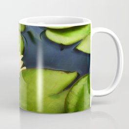 Nelumbo Lutea  Coffee Mug