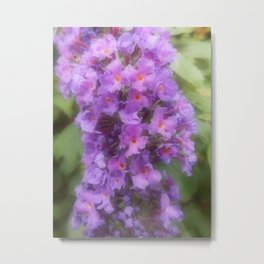 Buddleia Power Metal Print