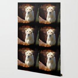 African White Lion Wallpaper