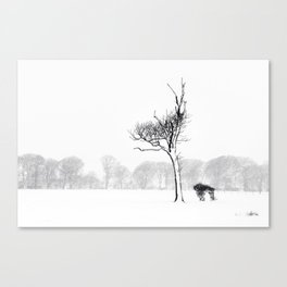 Winter Blizzard Canvas Print