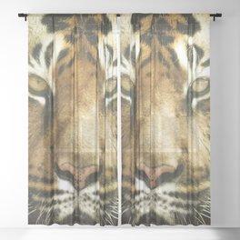 Face of Tiger Sheer Curtain