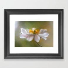 Anemone soft Framed Art Print