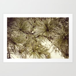 Glaze #6 Art Print