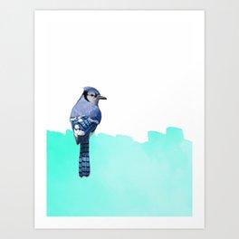 Bird Blue  Art Print