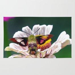 Hummingbird Moth Rug
