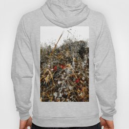 The Cold Heart of February Hoody