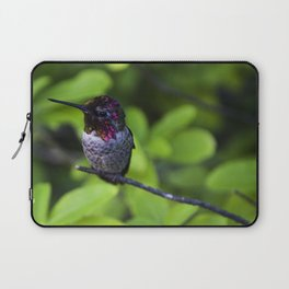 Hummingbird Laptop Sleeve