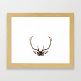 Antler Framed Art Print