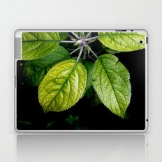 Backyard Leafs Nature Laptop & iPad Skin