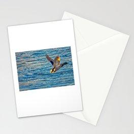 Mallard Duck In Flight Stationery Cards