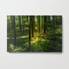 Finding the Light in the Darkness Metal Print