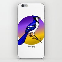 jay fleck iPhone & iPod Skins featuring BLUE JAY by SCREAMNJIMMY