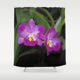Magnificent Magenta Orchid - Ctna Capri Shower Curtain