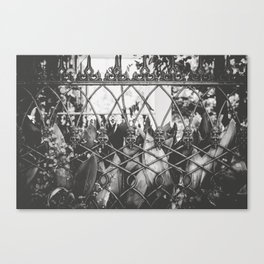 Skull Fence of New Orleans Canvas Print