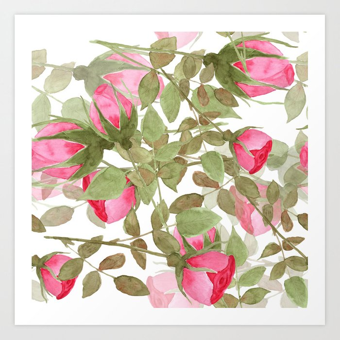 The buds of tender roses on a white background . Retro . Art Print