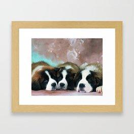 Cute Berner Sennen Framed Art Print