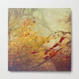 fall splendor Metal Print